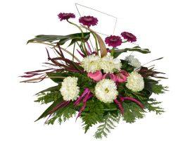 1 november - Vrtnarstvo Naglič