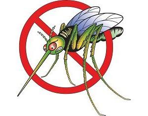 Domači odganjalec komarjev