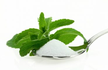rastlina stevija